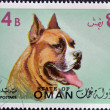 Stamp printed in Oman, shows a Dog breed American Staffordshire — Stock Photo