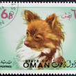 Stamp printed in Oman, shows a Chihuahua dog breed — Stock Photo