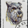 A stamp printed in Tanzania shows Zwergschnauzer - Foto Stock