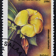 A stamp printed in Tanzania dedicated to tropical flowers, shows allamanda cathartica - Foto Stock