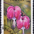 A stamp printed in Tanzania dedicated to tropical flowers, shows dicentra spectabilis - Foto Stock