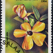 A stamp printed in Tanzania dedicated to tropical flowers, shows thunbergia alata - Foto Stock