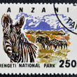 Stamp printed in Tanzania dedicated to Serengeti national park, shows zebra - Foto Stock