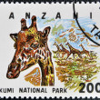 Stamp printed in Tanzania dedicated to Mikumi National Park, shows giraffe - Foto Stock