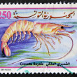 Stamp printed in Tunisia, shows a royal prawn - Foto Stock