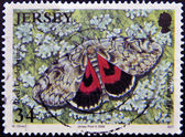 A stamp printed in Jersey shows red underwing, catocala nupta — Stok fotoğraf