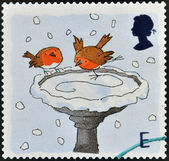 A stamp printed in England, is dedicated to Christmas, shows Robins skating on Bird Bath — Stock Photo