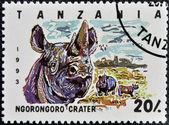 Stamp printed in Tanzania dedicated to Ngorongoro crater, shows rhinoceros — Stock Photo