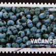 A stamp printed in France showing a ripe blueberries, vacation pictures — Stock Photo