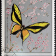 Stock Photo: Stamp printed in Oman, shows Butterfly, OrnithopterParadisea-auriflua
