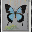 Stock Photo: Stamp printed in Oman, shows Butterfly, Papilio Ulysses-oxiartes