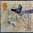 Stock Photo: Stamp printed in Great Britain shows Galapagos Finch and Fossilzed Skeleton (Darwin's theory of evolution)