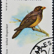Stock Photo: Stamp printed in Tanzanishows yellow - billed oxpecker