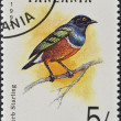 Stock Photo: Stamp printed in Tanzanishows superb starling