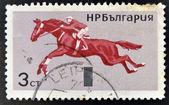 En stämpel som tryckt i bulgarien tillägnad rid sport, visar hoppning — Stockfoto