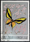 Stamp printed in Oman, shows a Butterfly, Ornithoptera Paradisea-auriflua — Стоковое фото