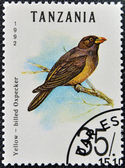 A stamp printed in Tanzania shows yellow - billed oxpecker — Stock Photo