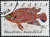 A stamp printed in Tanzania shows Hemichromis bimaculatusl — Стоковое фото