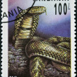 A stamp printed in Tanzania shows naja oxiana — Stock Photo #16234153