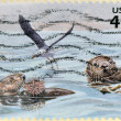 Royalty-Free Stock Photo: A stamp printed in USA shows two otters eating a hedgehog and a seabird