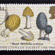 Stock Photo: UNITED KINGDOM - CIRC1988: stamp printed in Great Britain shows image of morel mushrooms (Morellesculenta) commemorates 200th anniversary of LinneSociety, circ1988