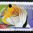 SOUTH AFRICA - CIRCA 2000: A stamp printed in RSA shows threadfin butterflyfish, Chaetodon auriga, circa 2000 — Stock Photo