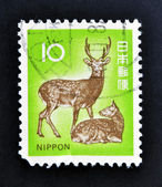 JAPAN - CIRCA 1970: A stamp printed in Japan shows a male dear and a female dear, circa 1970 — Stock Photo
