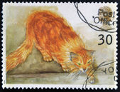 UNITED KINGDOM - CIRCA 1995: A stamp printed in Great Britain shows Choe (ginger cat), circa 1995 — Stock Photo