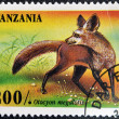 TANZANIA - CIRCA 1995: A stamp printed in Tanzania shows Bat Eared Fox, Otocyon megalotis, circa 1995 - Stock Photo