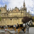 Typical image with horse carriages and the Cathedral of Seville - Stok fotoğraf