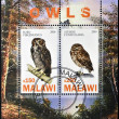 Stock Photo: MALAWI - CIRC2010: Stamps printed in Malawi dedicated to owls, circ2010