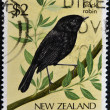 NEW ZEALAND - CIRCA 1986: A stamp printed in New Zealand, shows a black robin, circa 1986 — Stock Photo