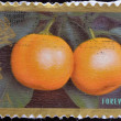 UNITED STATES OF AMERICA - CIRCA 2011: A stamp printed in USA dedicated to lunar new year shows Kumquats, circa 2011 — Stock Photo