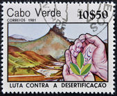 CABO VERDE-CIRCA 1981: A post stamp printed in Cabo Verde dedicated to Combat Desertification shows three leaves on hands, circa 1981 — Stock Photo