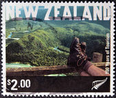 NEW ZEALAND - CIRCA 2001: A stamp printed in New Zeland shows Tramping, Fiordland National Park, circa 2001 — Stock Photo