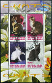 BURUNDI - CIRCA 2009: Stamps printed in Burundi shows cats, circa 2009 — Stock Photo