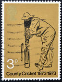 UNITED KINGDOM - CIRCA 1973: A stamp printed in Great Britain dedicated to County Cricket, circa 1973 — Stock Photo