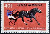 Rumania - circa 1974: sello impreso en rumania muestra las carreras de caballos, circa 1974. — Foto de Stock