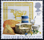 UNITED KINGDOM - CIRCA 1989: A stamp printed in Great Britain dedicated to food an farming, shows Dairy Produce, circa 1989 — Stock Photo