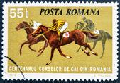 ROMANIA - CIRCA 1974: A stamp printed in Romania shows horse races, circa 1974. — Stock Photo