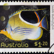 AUSTRALIA - CIRCA 2010: A stamp printed in Australia shows an image of saddle butterflyfish, circa 2010 — Stock Photo