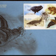 CANADA - CIRCA 2007: stamps printed in Canada dedicated to marine animals, circa 2007 — Stock Photo