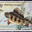 UNITED KINGDOM - CIRCA 1982 : A Stamp printed in Great Britain shows Perch Fish, circa 1982 — Stock Photo
