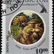 UZBEKISTAN - CIRCA 1995: A stamp printed in Uzbekistan shows Ursus arctos isabellinus, circa 1961 — Stock Photo