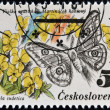 CZECHOSLOVAKIA - CIRCA 1983: A Stamp printed in Czechoslovakia shows image of a eudia pavonia and viola sudetica, circa 1983 — Stock Photo #19887005