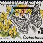 CZECHOSLOVAKIA - CIRCA 1983: A Stamp printed in Czechoslovakia shows image of a eudia pavonia and viola sudetica, circa 1983 — Stock Photo