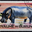 BURUNDI - CIRC1964: stamp printed in Kingdom of Burundi shows Africanimal - Hippopotamus, circ1964 — Stock Photo #19888367