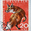 SWITZERLAND - CIRCA 1966: a stamp printed in Switzerland shows Red Fox, Vulpes Vulpes, circa 1966 — Stock Photo #19888605
