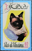 RAS AL-KHAIMAH - CIRCA 1971: A stamp printed in Ras al-Khaimah shows a cat, circa 1971 — Foto Stock