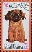 RAS AL-KHAIMAH - CIRCA 1971: A stamp printed in Ras al-Khaimah shows a dog, circa 1971 — Foto de Stock